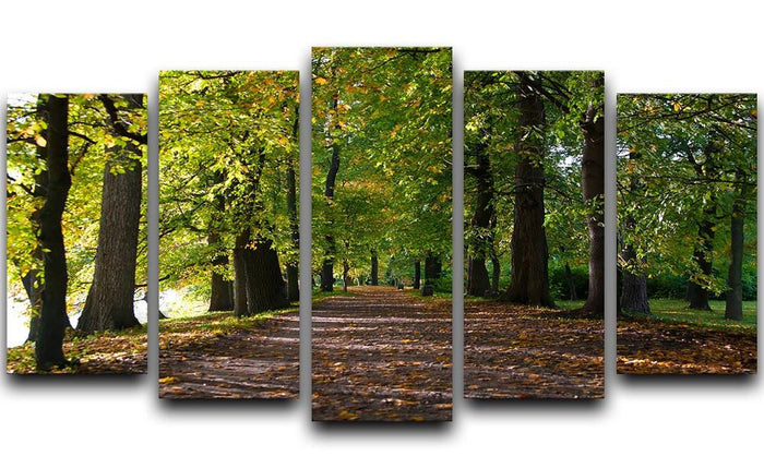 autumn road with leaves in park 5 Split Panel Canvas