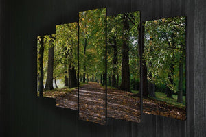 autumn road with leaves in park 5 Split Panel Canvas  - Canvas Art Rocks - 2