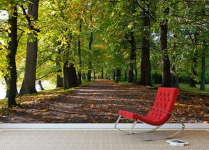 autumn road with leaves in park Wall Mural Wallpaper - Canvas Art Rocks - 2