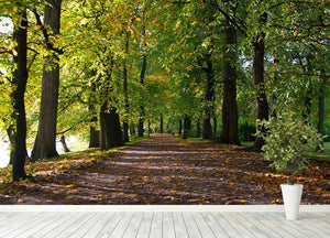 autumn road with leaves in park Wall Mural Wallpaper - Canvas Art Rocks - 4