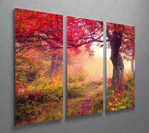 autumn trees in forest 3 Split Panel Canvas Print - Canvas Art Rocks - 2