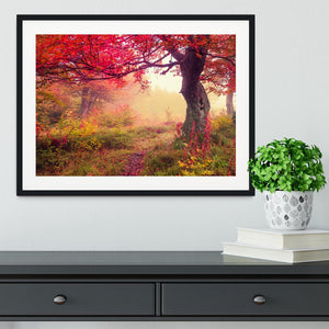 autumn trees in forest Framed Print - Canvas Art Rocks - 1