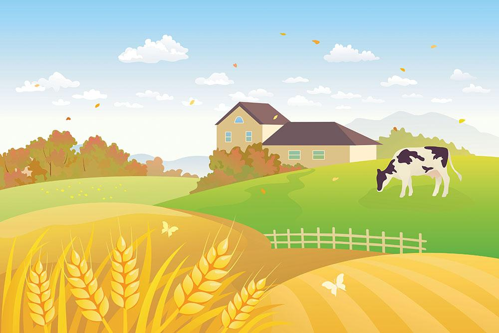 Beautiful Fall Countryside Scene With A Grazing Cow Wall Mural Wallpaper