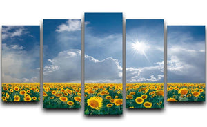 big sunflowers field and blue sky 5 Split Panel Canvas  - Canvas Art Rocks - 1