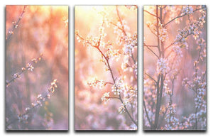 blooming tree and sun flare 3 Split Panel Canvas Print - Canvas Art Rocks - 1