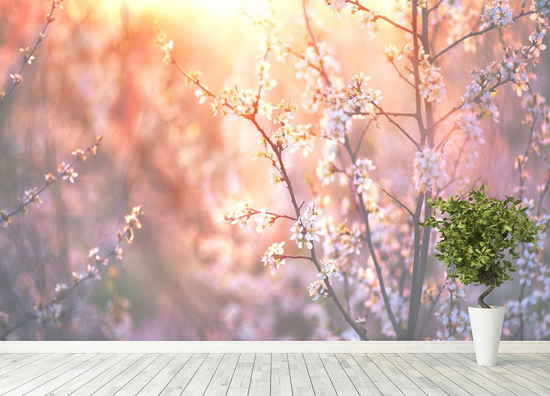 blooming tree and sun flare Wall Mural Wallpaper - Canvas Art Rocks - 4