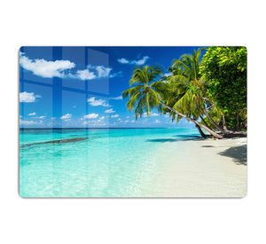 coco palms on paradise beach HD Metal Print - Canvas Art Rocks - 1