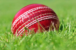 cricket ball on the grass Wall Mural Wallpaper - Canvas Art Rocks - 1