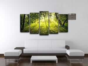 deep forest on summer morning 5 Split Panel Canvas  - Canvas Art Rocks - 3