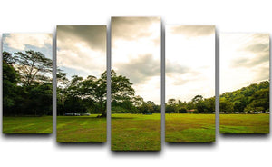 grass and bigtree in the forrest 5 Split Panel Canvas  - Canvas Art Rocks - 1