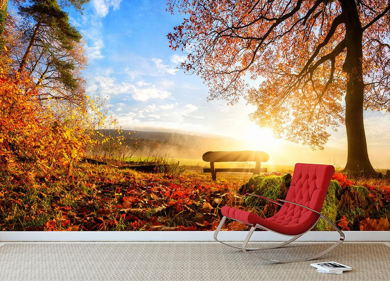 landscape with the sun warmly illumining Wall Mural Wallpaper - Canvas Art Rocks - 1