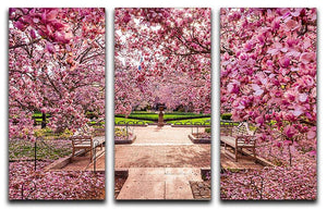 spring foliage near the National Mall 3 Split Panel Canvas Print - Canvas Art Rocks - 1