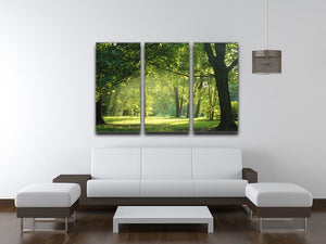 trees in a summer forest 3 Split Panel Canvas Print - Canvas Art Rocks - 3