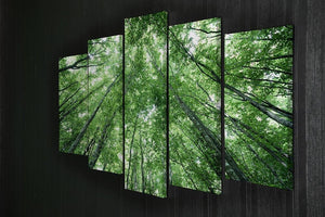 trees meeting eachother at the sky 5 Split Panel Canvas  - Canvas Art Rocks - 2