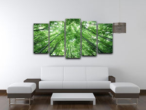 trees meeting eachother at the sky 5 Split Panel Canvas  - Canvas Art Rocks - 3