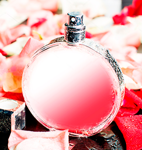 All Brands Womens Perfumes Collection at Oxemize.com