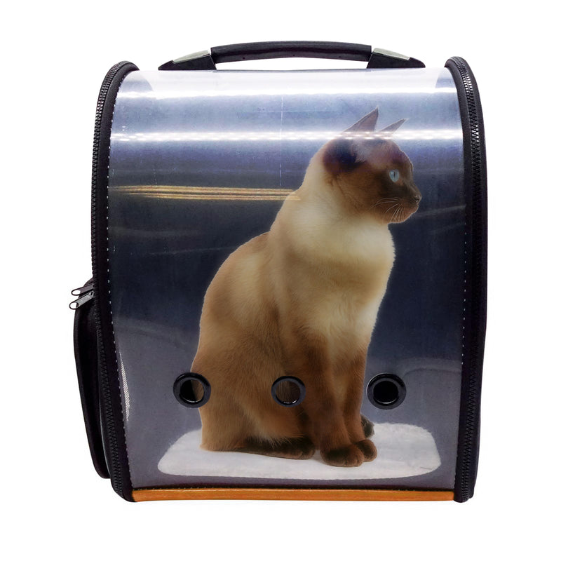 Portable Carrier Bag Transparent Cover Gold Backpack Travel Bag Design for Cat and Small Dogs Birds Airline Approved Mutil Colors to Choose