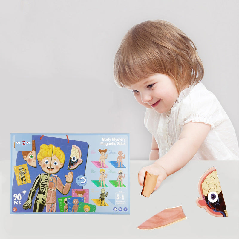 Magnetic Playing Puzzles Educational Anatomy Body Learning Toy for Kids Boys Girls