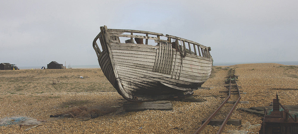 dungeness-featured