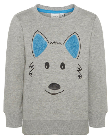 Sweater hond
