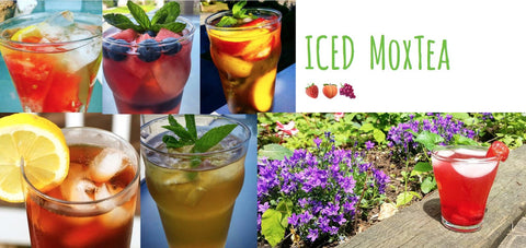 Iced MoxTea - Your ideal cold drink this Summer!