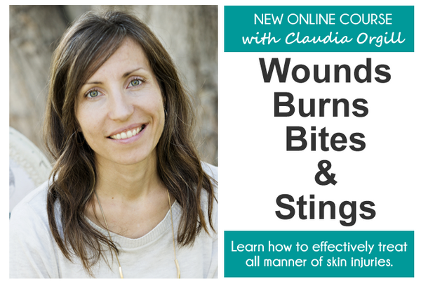 Healing Wounds, Burns, Bites & Stings - Online Course! (Purchase from link in description.)