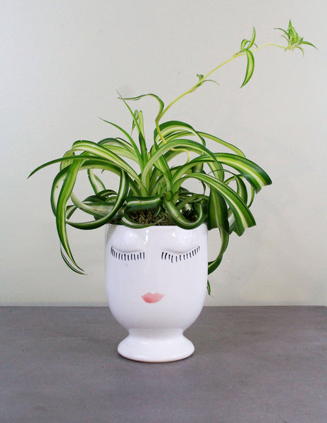 Celfie Cup with a Green Plant