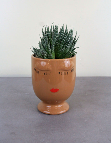 Celfie Cup with a Succulent