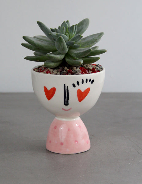 Heart Eyes vase with a Succulent