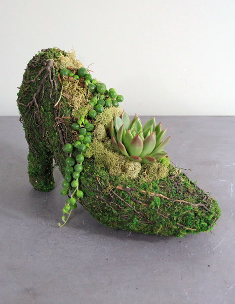 Succulents in a Stiletto