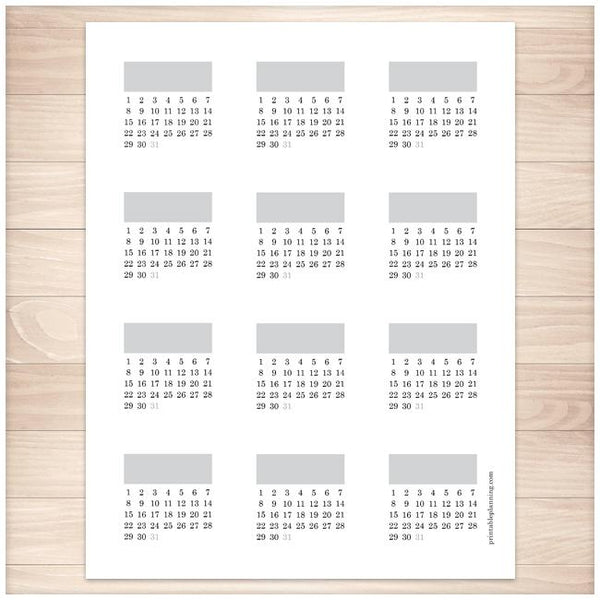 Daily Vitamin Tracking 2-inch Square Stickers - Printable Planning