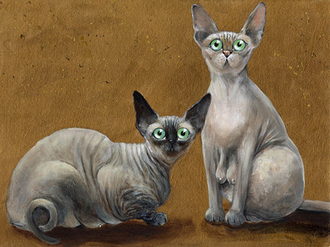 Fluffy and Coco sphynx cat painting by Kim Haskins