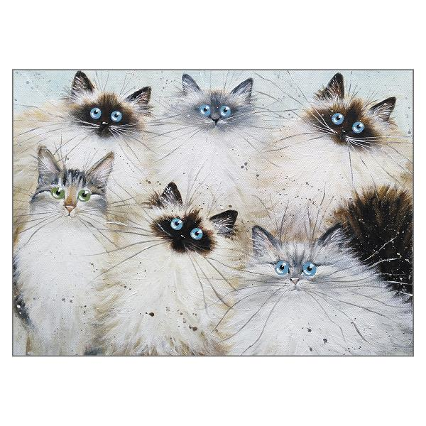 'Rita's Cats' greetings card