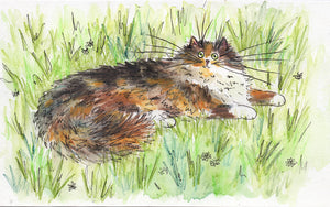 'Fluffy Garden Tortie' drawing