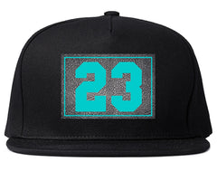 Winter 2015 Collection Snapbacks