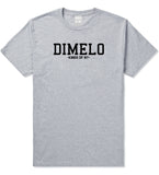 Dimelo Kings Of NY T-Shirt in Grey