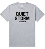 Quiet Storm Kings Of NY Mens T Shirt Grey