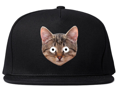 Cats Crazy Kittens Snapback Hat By Kings Of NY
