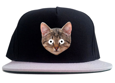 Cats Crazy Kittens 2 Tone Snapback Hat By Kings Of NY