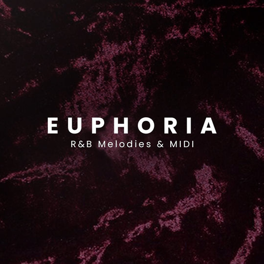 Euphoria R&B Melody Loops - The Producer Kit