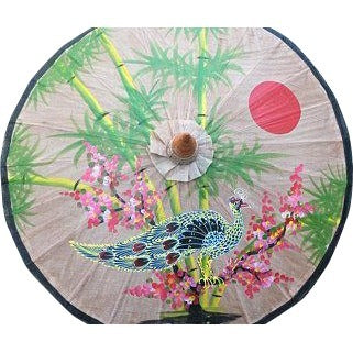 Parasol Umbrella Bamboo, Tree and Peacock and Sun on Natural Painted on Oiled Cotton