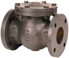 "NIBCO - 6"" Cast Iron Check Valve - Flanged, 200 WOG"