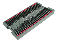 51PC PRECISION DRIVERS TRAY SET
