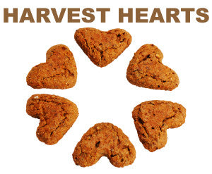 8 oz. Harvest Hearts Treats