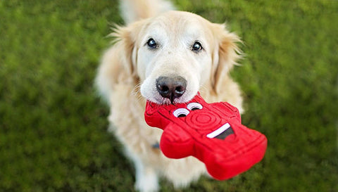 Harry The Fire Hydrant Dog Toy By PrideBites
