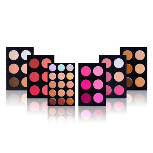 All in One Mini Masterpiece Face Makeup Set by SHANY Cosmetics