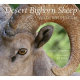 Desert Bighorn Sheep Wilderness Icon