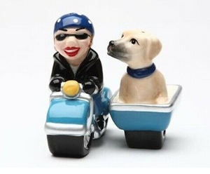 Dog Gone Side Car Magnetic Salt And Pepper Shaker Set