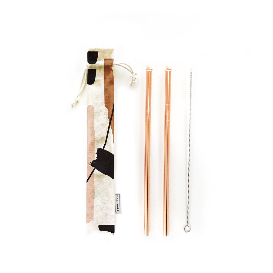 Eco Friendly Reusable 4 pc Straws Set--Hold On