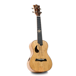 Snail BH-1C Spalted Maple Concert Ukulele - Freebirdmusic